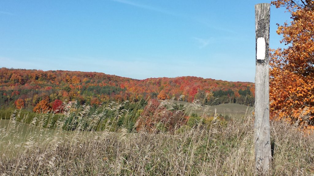 Hockley Valley Resort - HeidiBischof - 2016-10-15-10-54-52