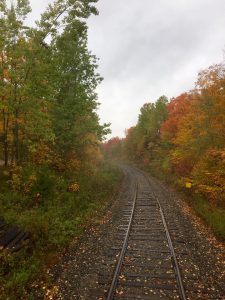 2016-fall-colours-train-ride-down-the-track-jean-kerins-14724434_1150674451668338_4591341585400179103_n