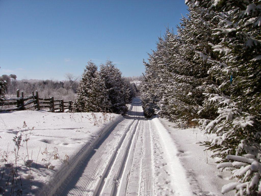 westside-story-trail-5-feb2015-dmoule-imgp0042