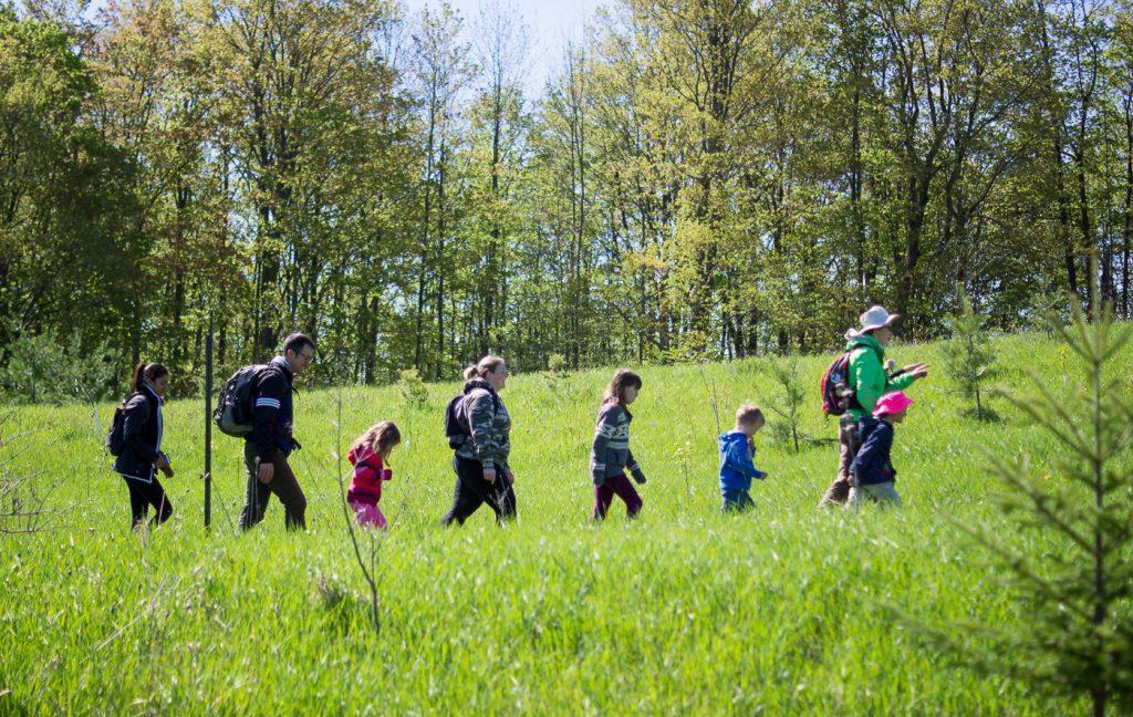 kids hikes  u2013 caledon hills bruce trail club