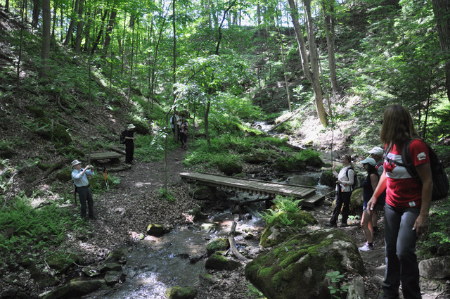 Tuesday Hikes